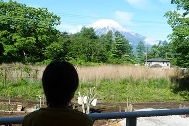 全客室より富士山眺望