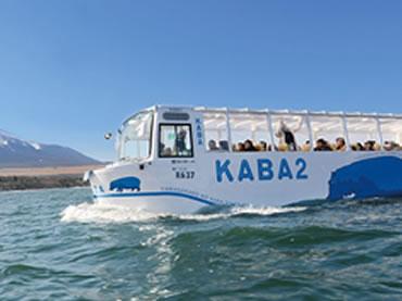 写真:水陸両用バス 山中湖のカバ
